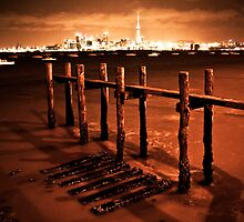 Auckland City Scape with Pier at low tide by Kiwikels