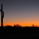 Saguaro Sunset by Kimberly P-Chadwick