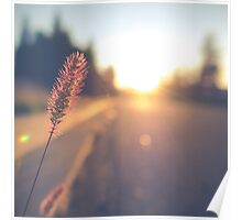 Retro Sunset Street Scene Poster