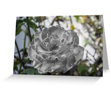 Charcoal Flower Greeting Card
