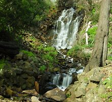 Oldaker Falls Burnie by michellerena