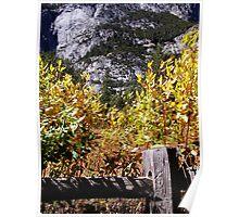 Autum In Yosemite Valley Poster