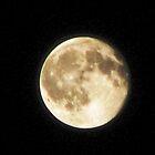 Full Moon by Linda Miller Gesualdo