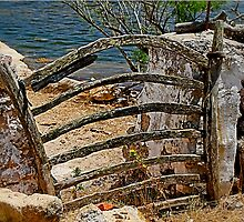 Rustic gate by Spadgie