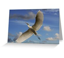 Soaring Grace Greeting Card