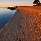 Timeless Sands by Kylie  Sheahen