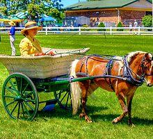 Nanny Cart by ECH52