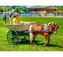 Nanny Cart Photographic Print