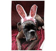 Boxer With *Wabbit* Ears - Boxer Dogs Series Poster