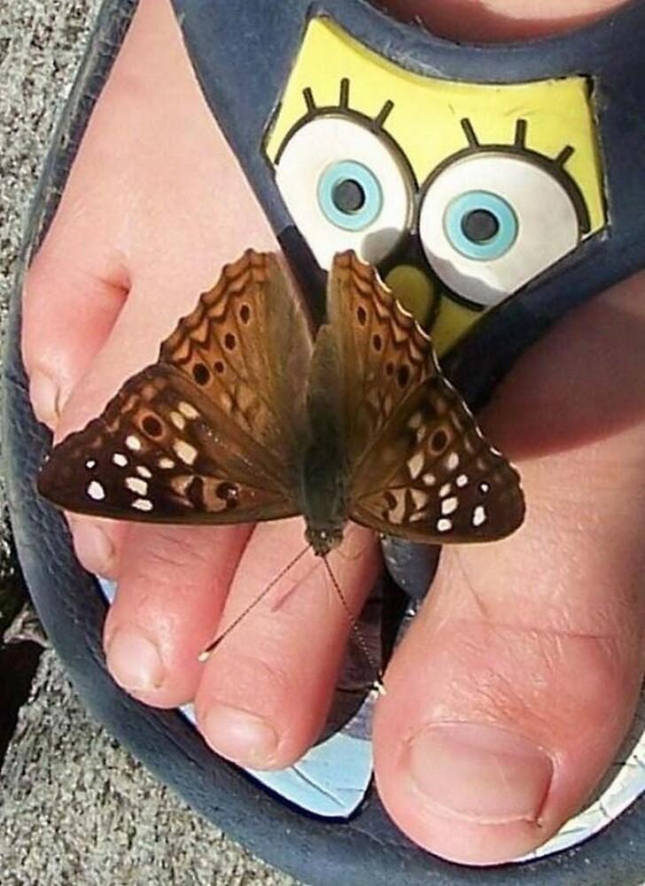 Oh My! Moth surprising Sponge Bob by grandmarennie