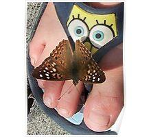 Oh My! Moth surprising Sponge Bob Poster