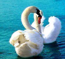 Love must be sincere ! by kindangel