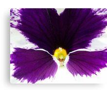 Purple Pansy - Macro Shot Canvas Print