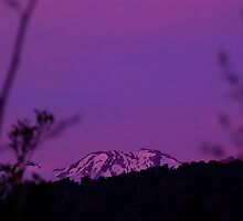 Mauve Mountain by Phil Rhodes