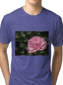 Pink Wild Rose Tri-blend T-Shirt