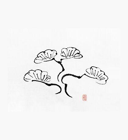 Simple Bonsai Sumi Photographic Print