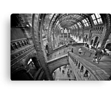 Natural History Museum Staircases - Black and White Version Canvas Print