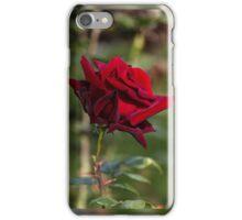 Dark Rose iPhone Case/Skin