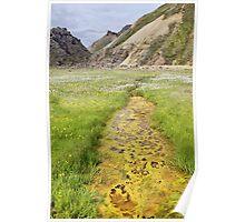 Geothermal Stream in Landmannalaugar Poster