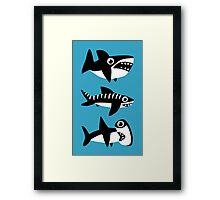 Dumb Sharks Framed Print