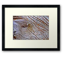 Naturally Aged Wood Framed Print