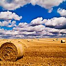 Hay Bales with cloudy sky by ArtforARMS