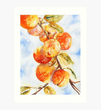 Peaches Without Cream Art Print