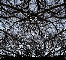 Abstract tree branches pattern by steveball