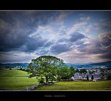 Tree @ Windermere - UK by lijomanarcad