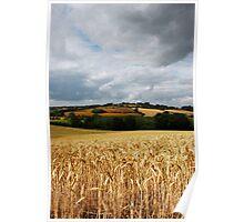 Beautiful British Countryside Poster