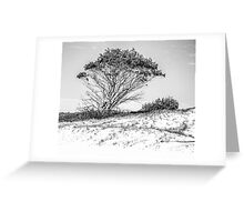 Tree in high key black and white Greeting Card