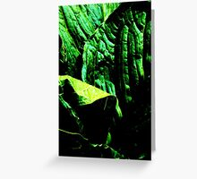 More Skunk Cabbage Please Greeting Card