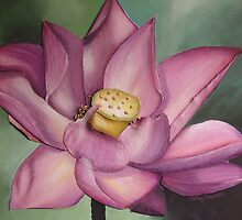 Lotus by cathy savels