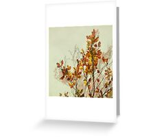autumn symphonies I Greeting Card