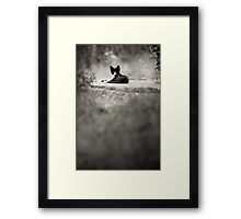 OnePhotoPerDay Series: 203 by L. Framed Print