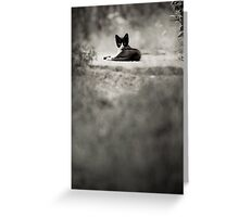 OnePhotoPerDay Series: 203 by L. Greeting Card