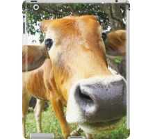 Funny cow in the farm iPad Case/Skin