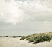beachy by Iris Lehnhardt