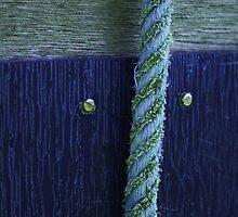 Screw  Rope by elizabethdaresu