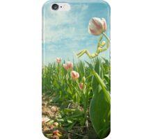 Dutch joy iPhone Case/Skin