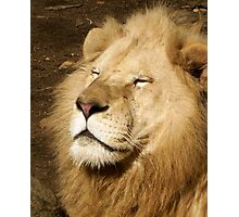 I Am The King Photographic Print