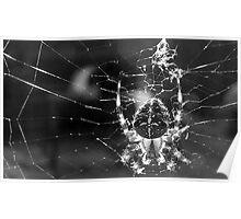 Intsey Winsey Spider .... YUK! Poster