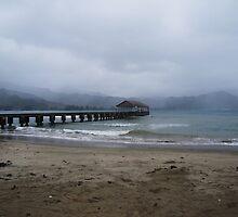 Hanalei Bay Pier by Natalie  Markova