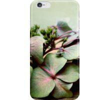 nostalgic blossoms iPhone Case/Skin
