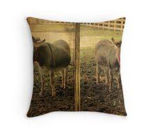The Donkeys Throw Pillow