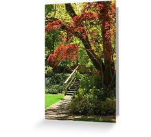 A Walk In Lithia Park Greeting Card