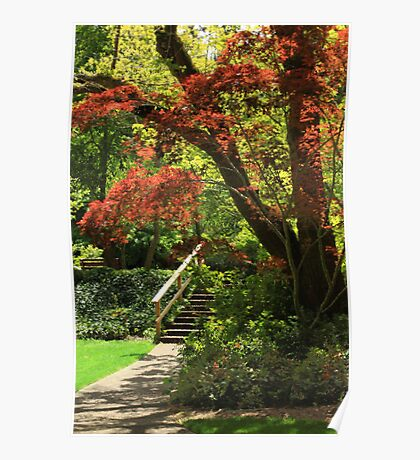 A Walk In Lithia Park Poster