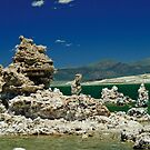Mono Lake by Phillip M. Burrow