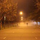 Lone Stranger  by Zoomantics