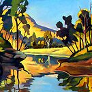 Wollombi Creek by Guntis Jansons
